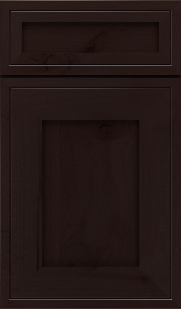airedale_5pc_rustic_alder_shaker_style_cabinet_door_coyote