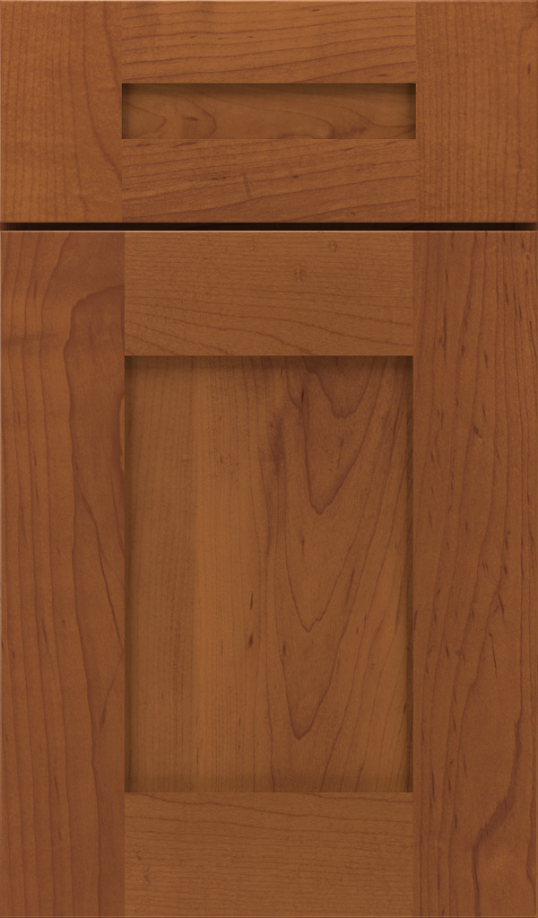 artisan_5pc_maple_shaker_cabinet_door_brandywine