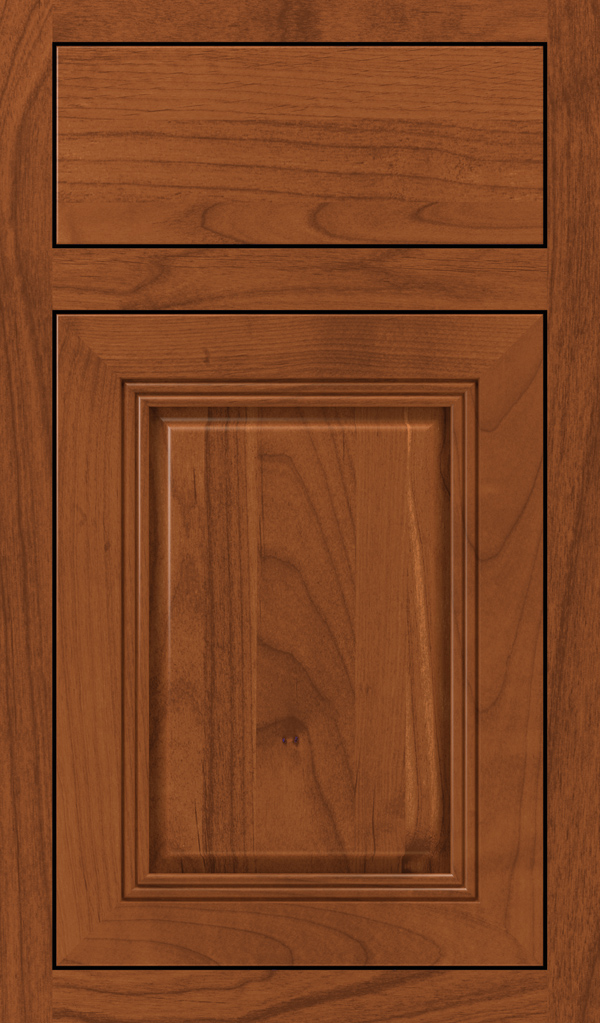 cambridge_alder_inset_cabinet_door_brandywine