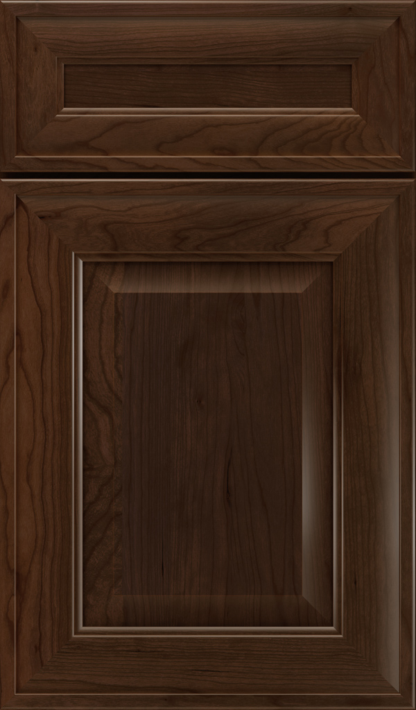 davenport_5pc_cherry_raised_panel_cabinet_door_bombay