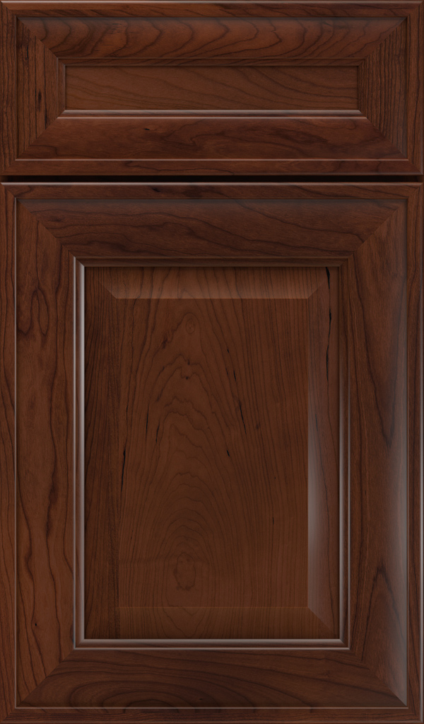 davenport_5pc_cherry_raised_panel_cabinet_door_sepia