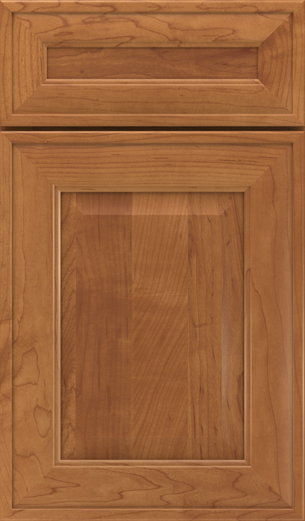 davenport_5pc_maple_raised_panel_cabinet_door_suede