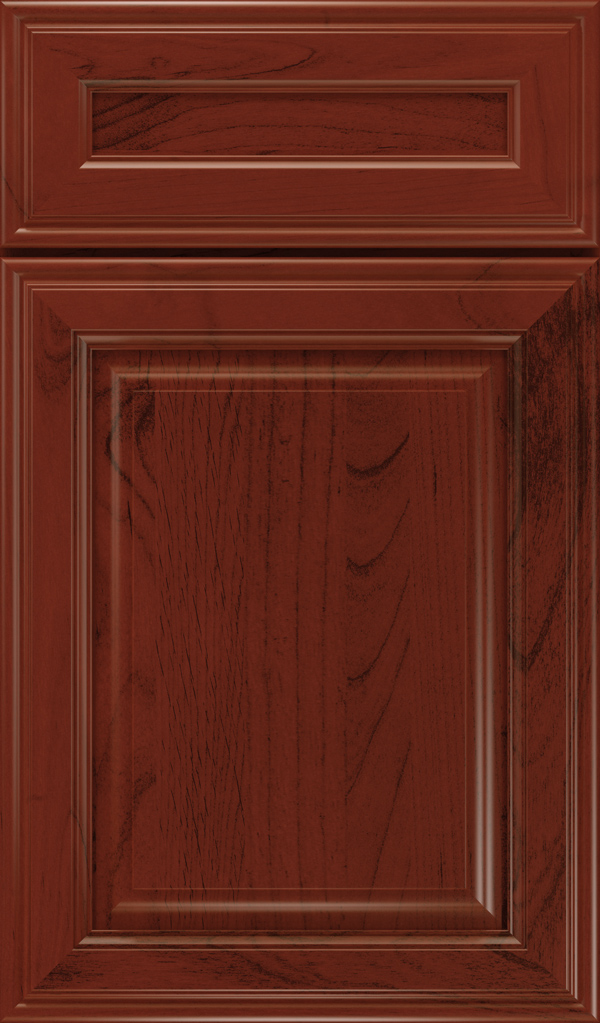 galleria_5pc_alder_raised_panel_cabinet_door_arlington