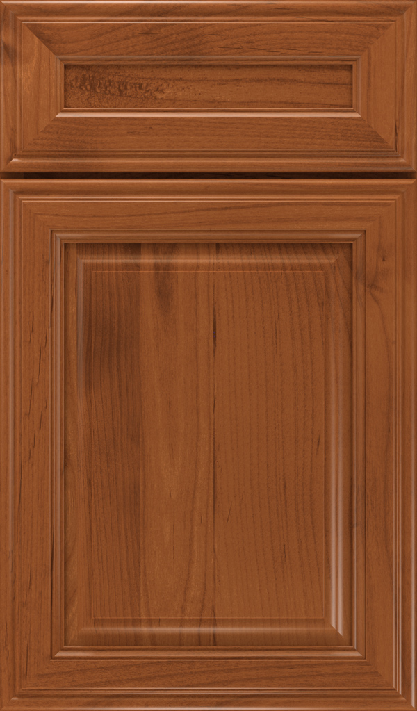 galleria_5pc_alder_raised_panel_cabinet_door_brandywine