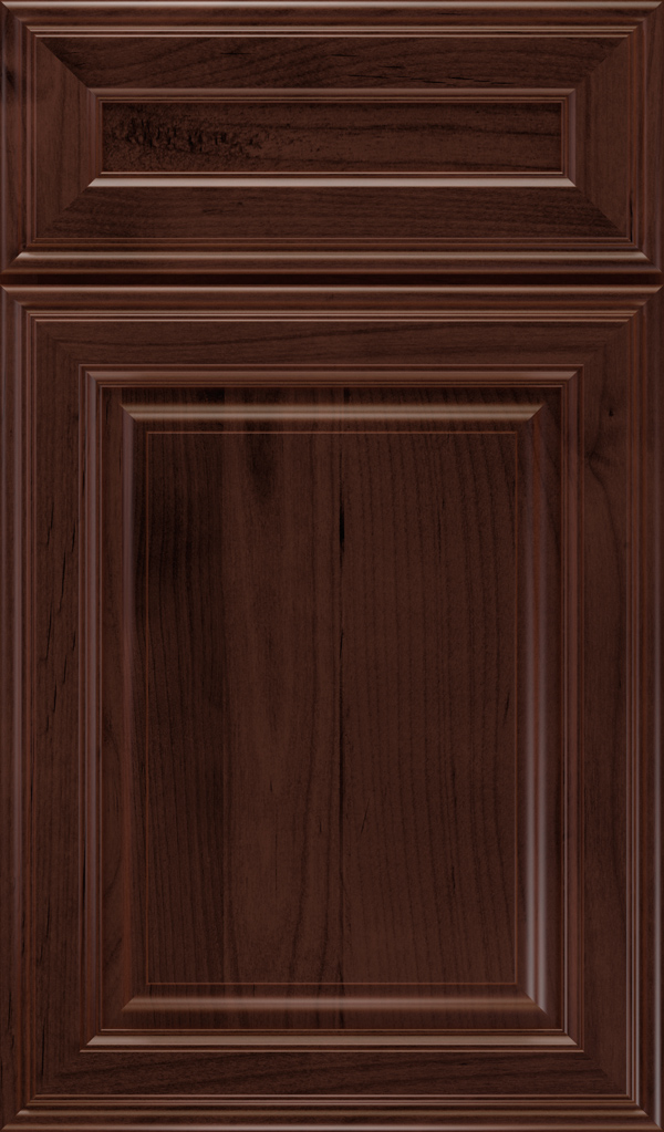 galleria_5pc_alder_raised_panel_cabinet_door_malbec
