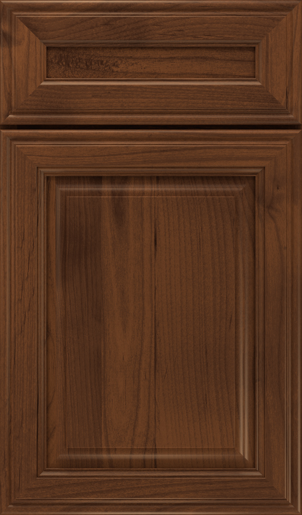 galleria_5pc_alder_raised_panel_cabinet_door_sepia