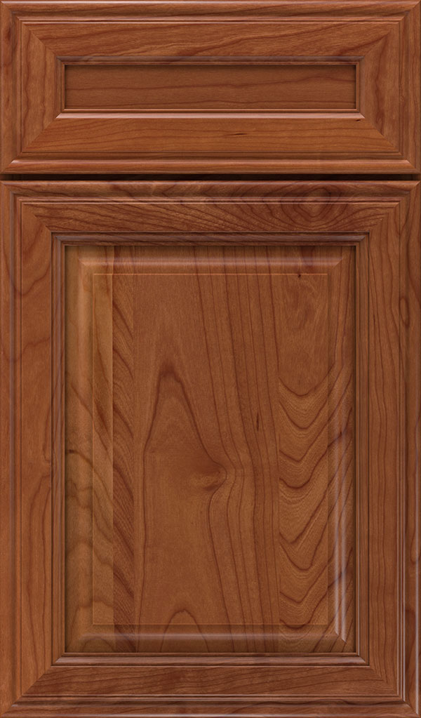 Galleria 5-Piece Cherry Raised Panel Cabinet Door in Brandywine