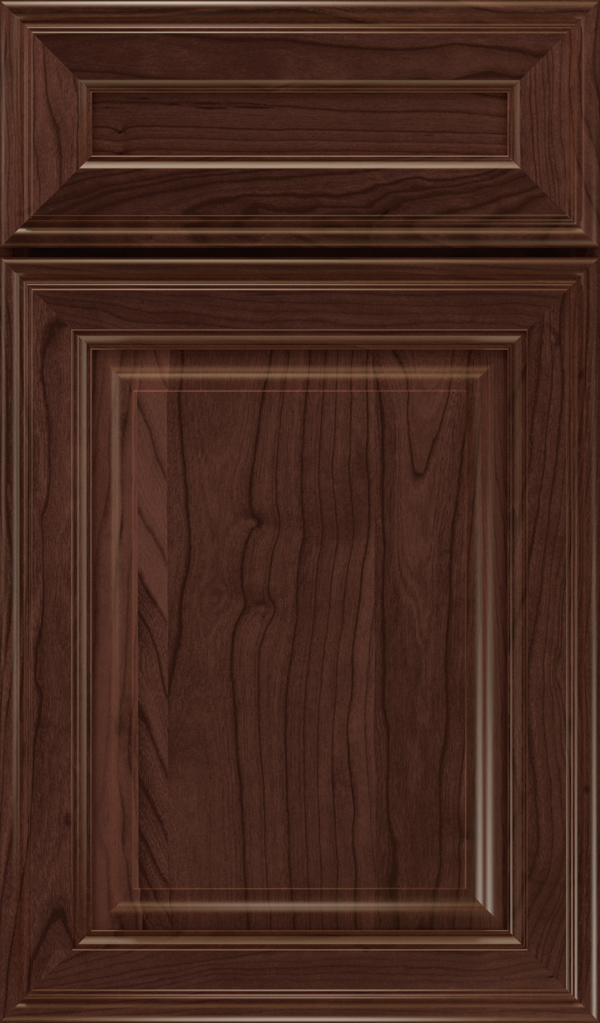galleria_5pc_cherry_raised_panel_cabinet_door_malbec