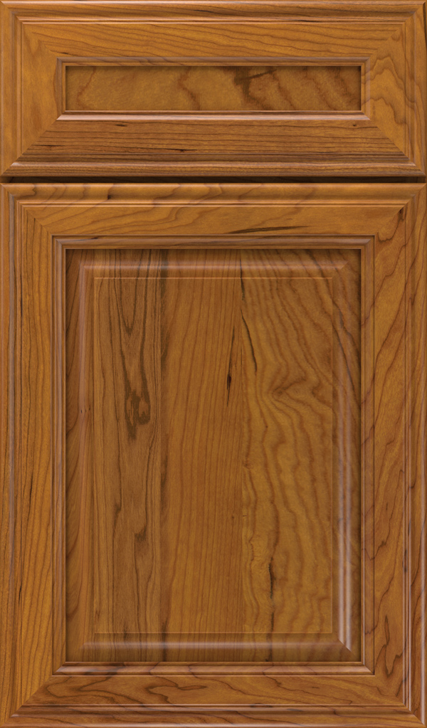 Galleria 5-Piece Cherry Raised Panel Cabinet Door in Pheasant