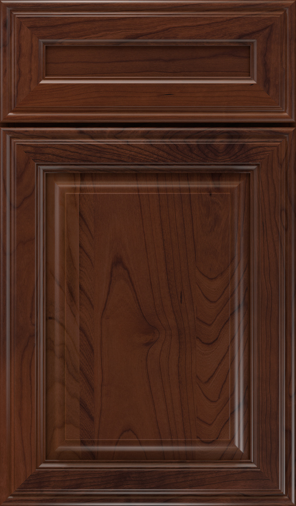 galleria_5pc_cherry_raised_panel_cabinet_door_sepia