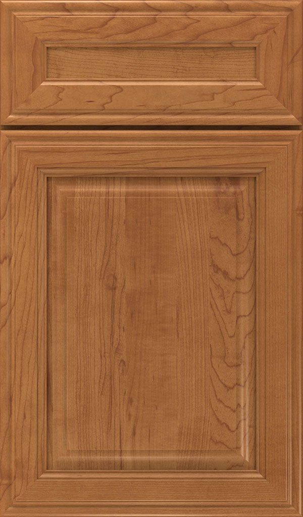 Galleria 5-Piece Maple Raised Panel Cabinet Door in Suede