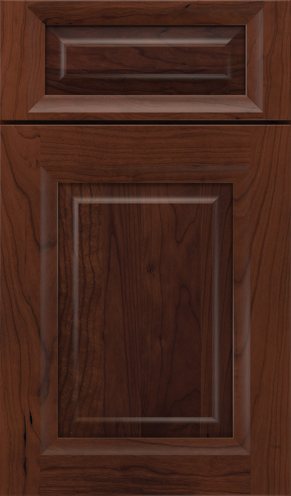 hawthorne_5pc_cherry_raised_panel_cabinet_door_sepia