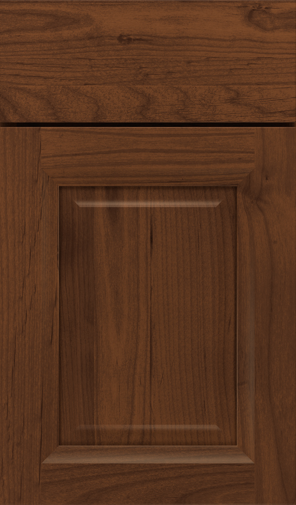 hawthorne_alder_raised_panel_cabinet_door_sepia