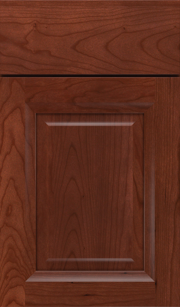 hawthorne_cherry_raised_panel_cabinet_door_arlington