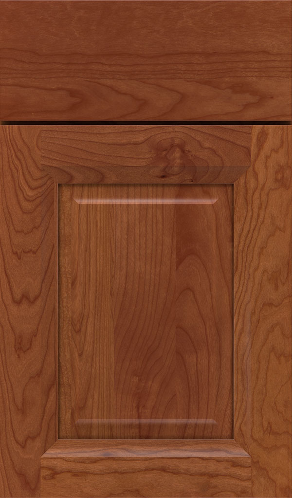 Hawthorne Cherry Raised Panel Cabinet Door in Brandywine