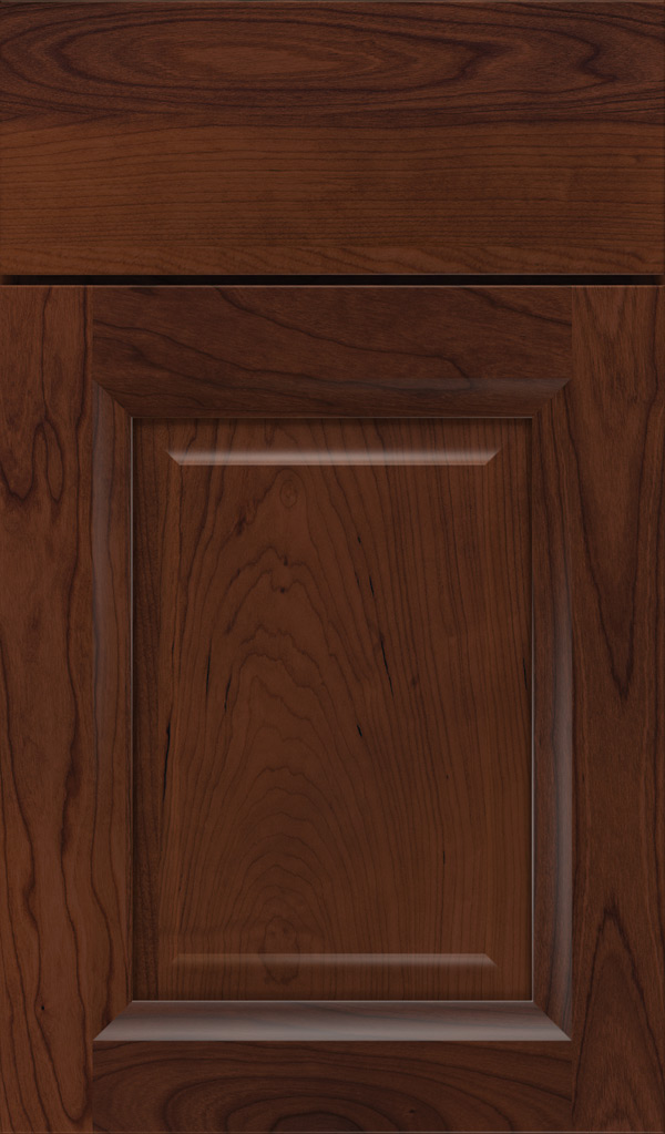hawthorne_cherry_raised_panel_cabinet_door_sepia