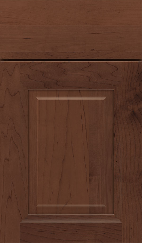 Hawthorne Maple Raised Panel Cabinet Door in Sepia