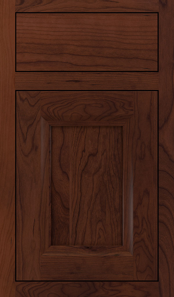 Huchenson Cherry Inset Cabinet Door in Sepia