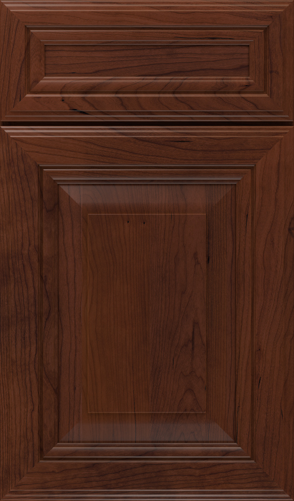lexington_5pc_cherry_raised_panel_cabinet_door_sepia