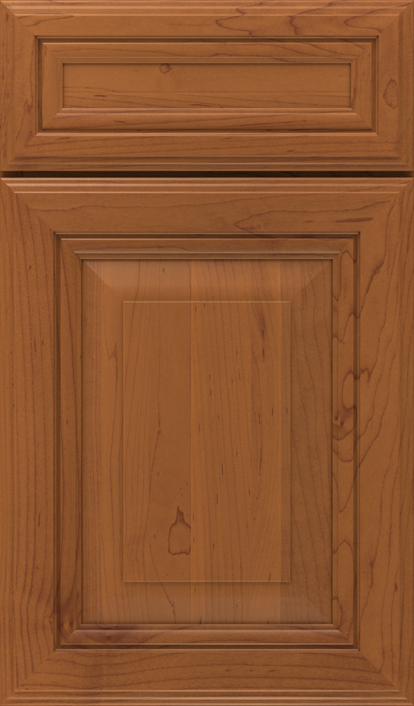lexington_5pc_maple_raised_panel_cabinet_door_brandywine