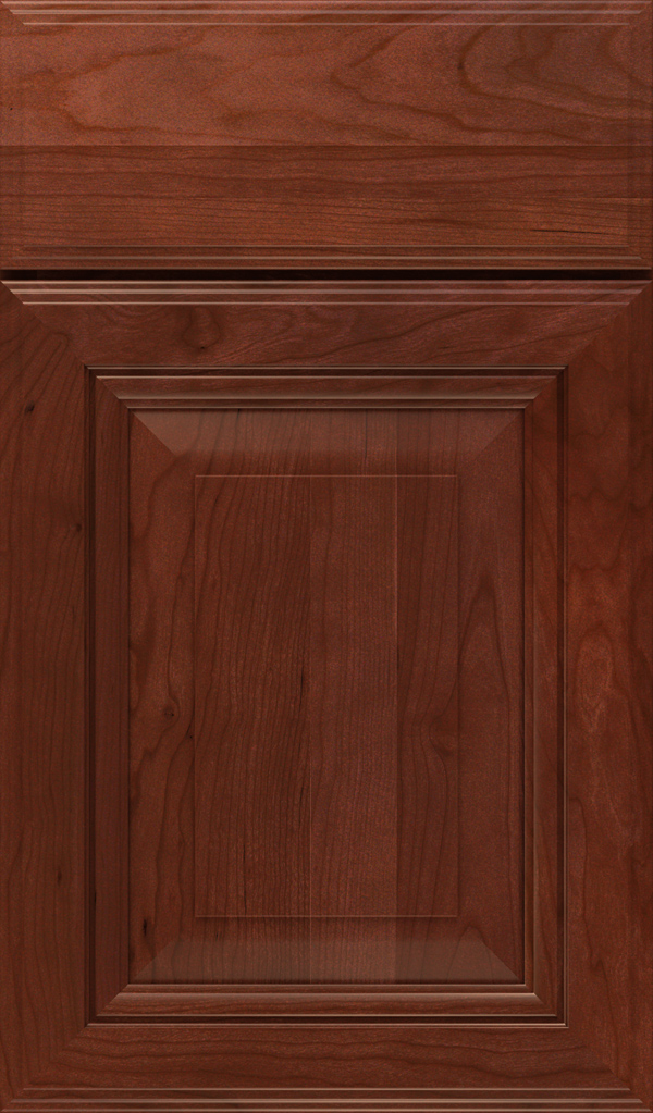 Lexington Cherry Raised Panel Cabinet Door in Arlington