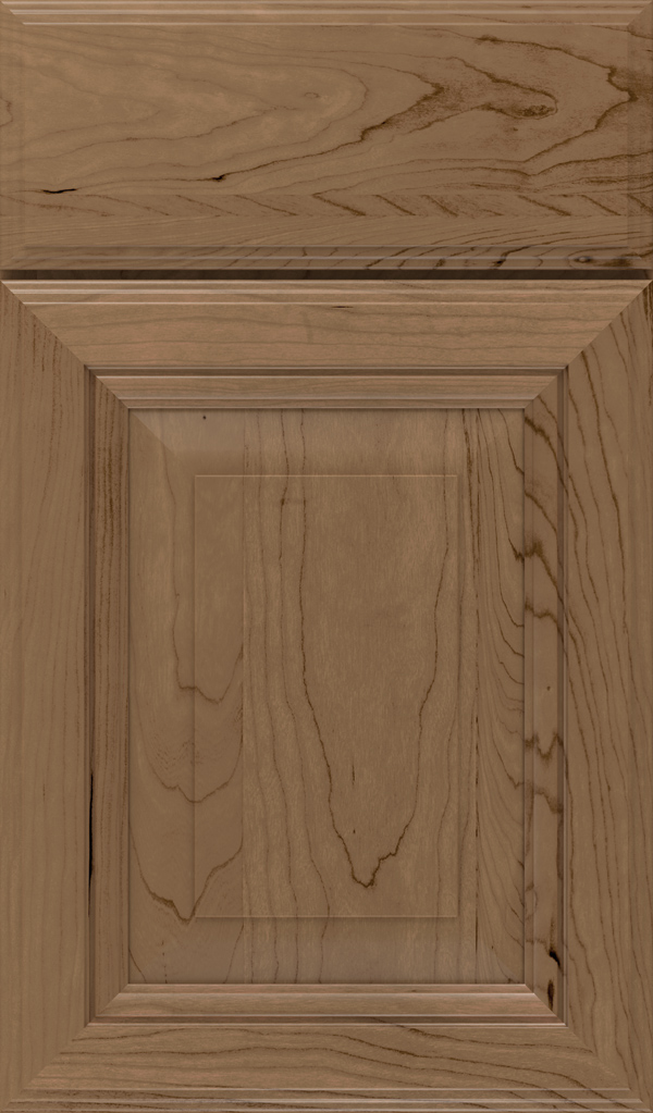 lexington_cherry_raised_panel_cabinet_door_gunny