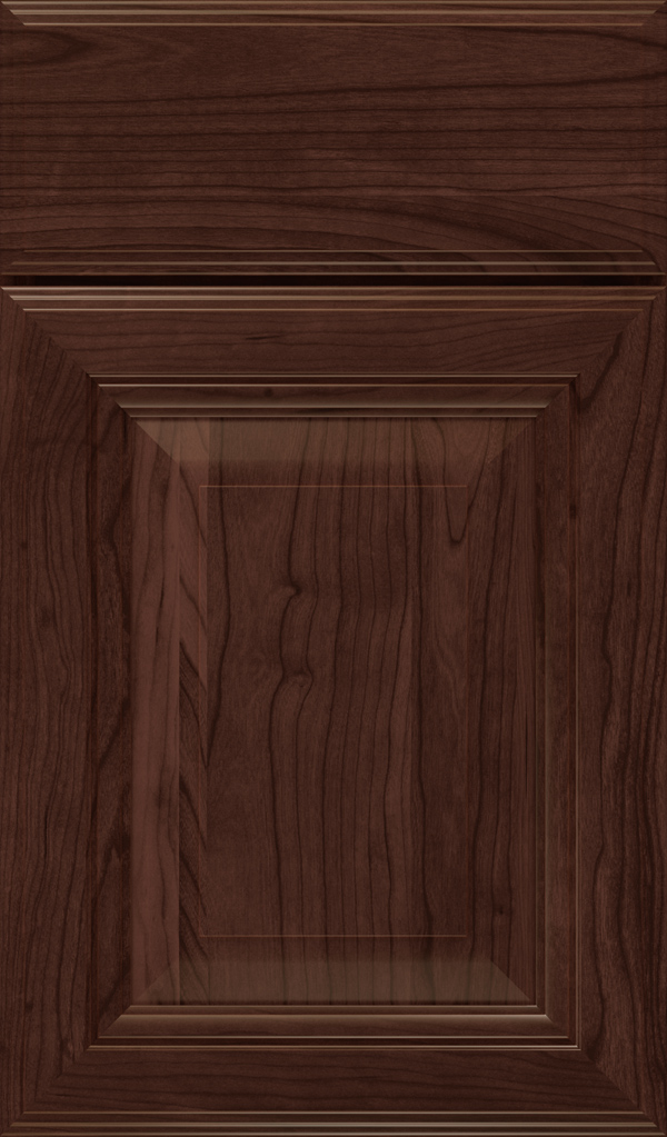 lexington_cherry_raised_panel_cabinet_door_malbec