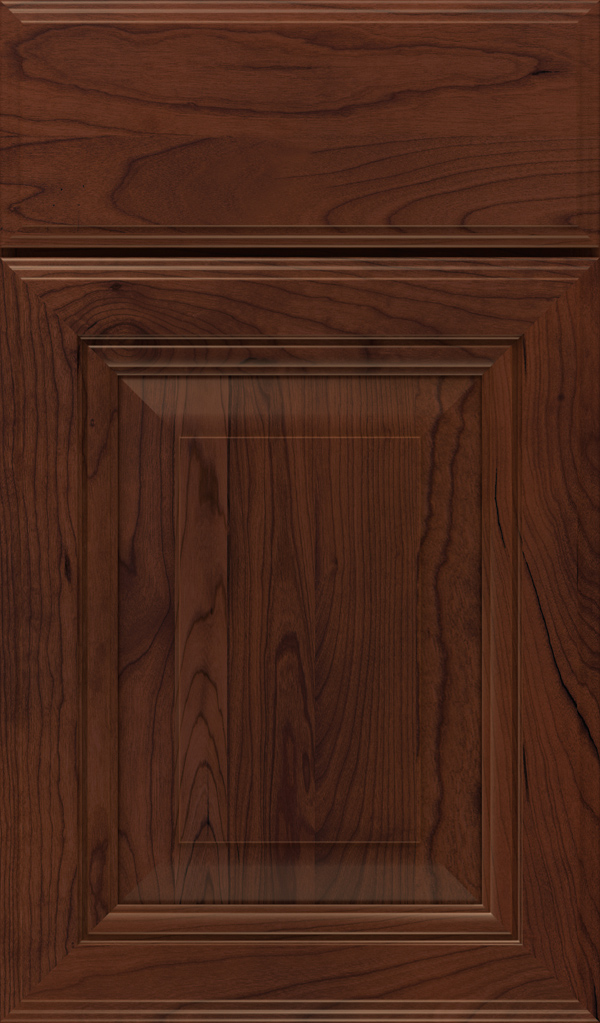 lexington_cherry_raised_panel_cabinet_door_sepia