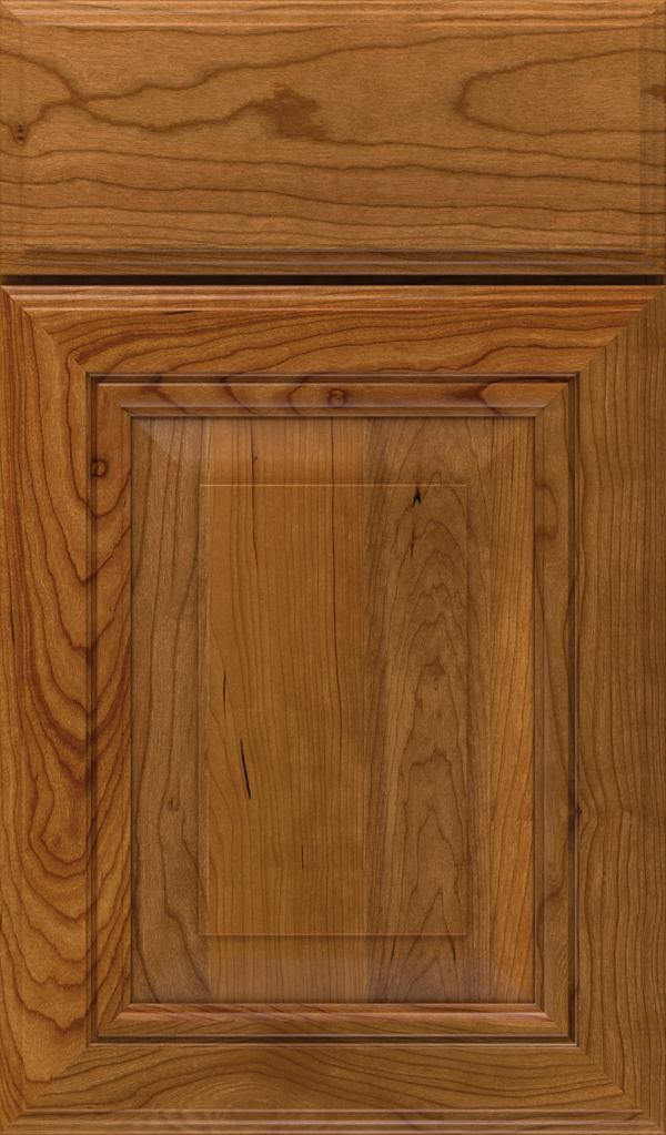 lexington_cherry_raised_panel_cabinet_door_suede