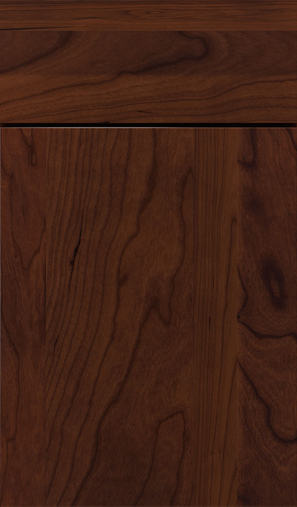 Marquis Chery Slab Cabinet Door in Sepia