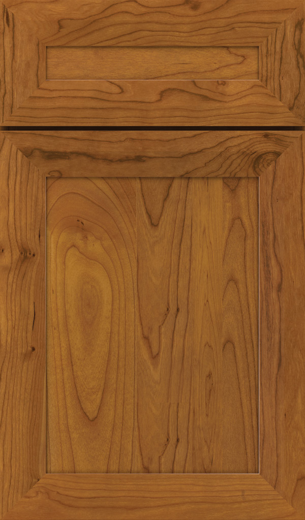 Modesto 5 Piece Cherry Recessed Panel Cabinet Door in Pheasant