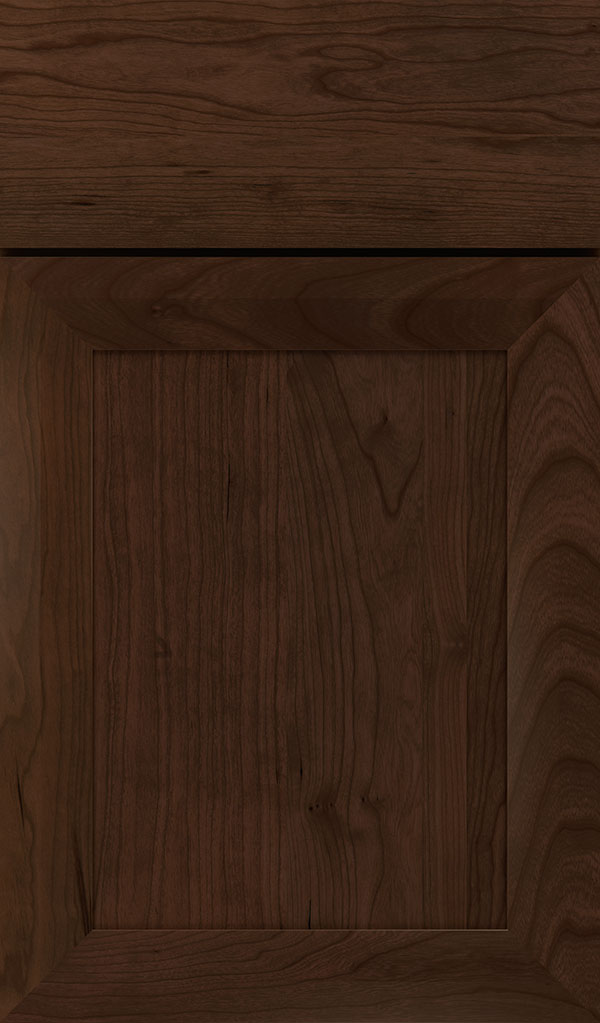 Modestro Cherry Recessed Panel Cabinet Door in Bombay