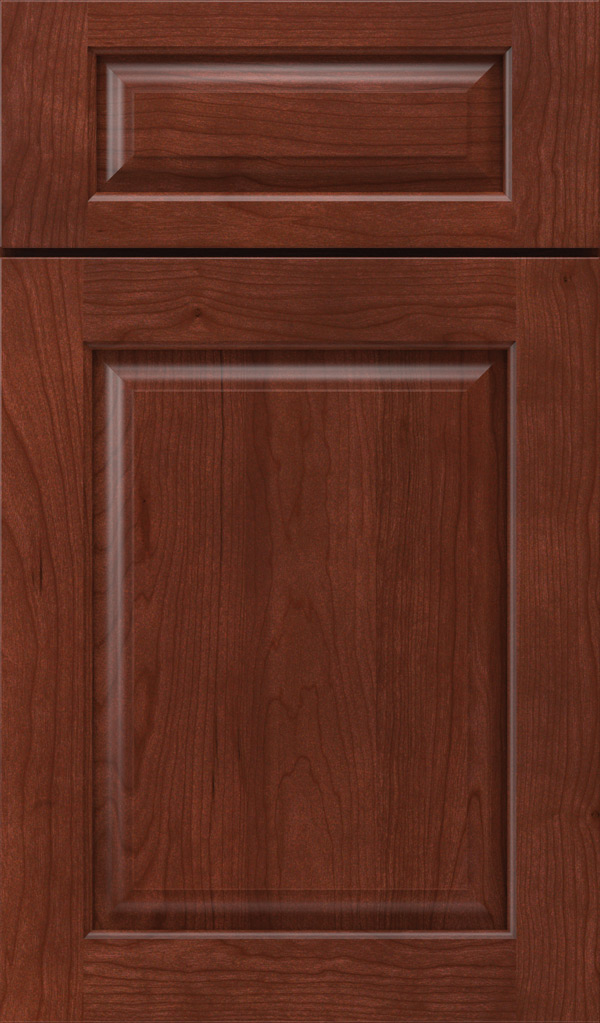 plaza_5pc_cherry_raised_panel_cabinet_door_arlington