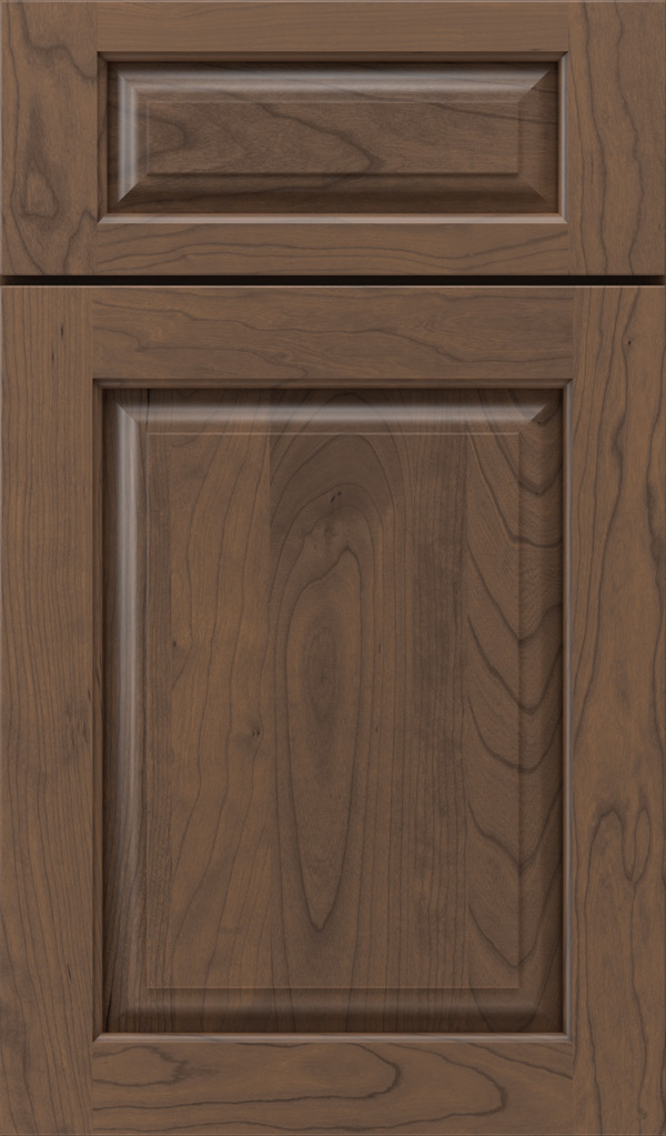 plaza_5pc_cherry_raised_panel_cabinet_door_kindling