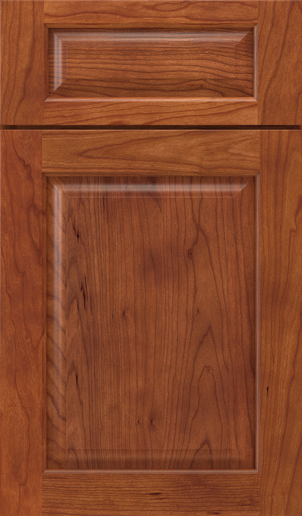 plaza_5pc_cherry_raised_panel_cabinet_door_shetland