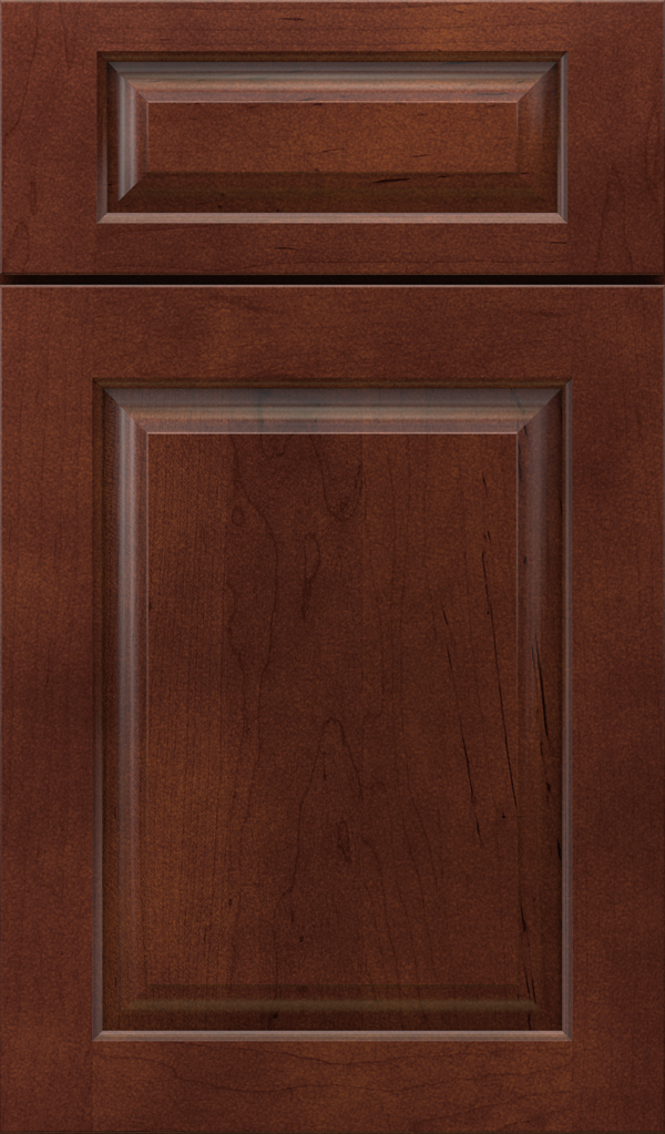 plaza_5pc_maple_raised_panel_cabinet_door_tannery