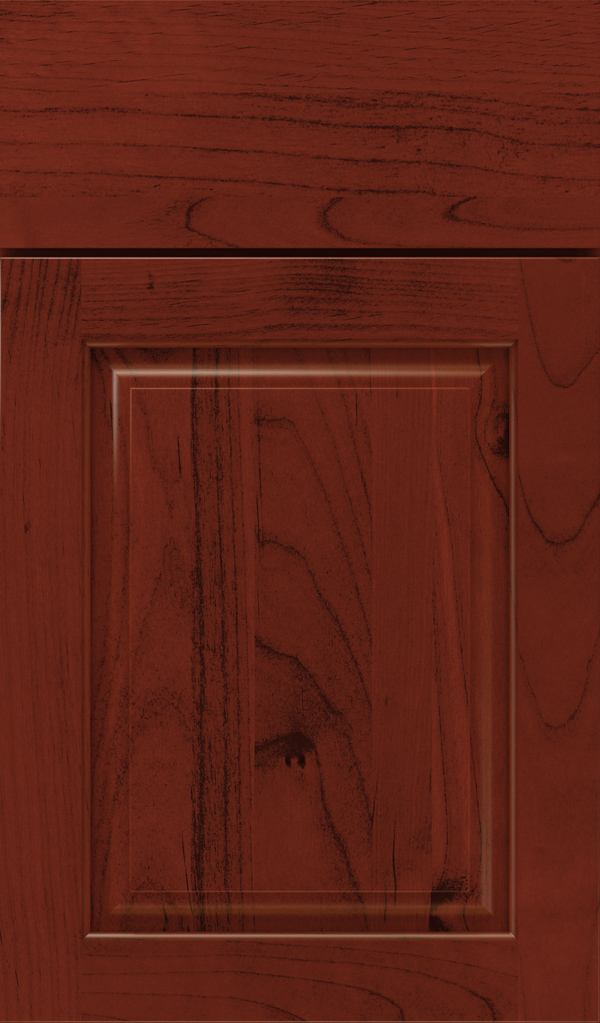 plaza_alder_raised_panel_cabinet_door_arlington