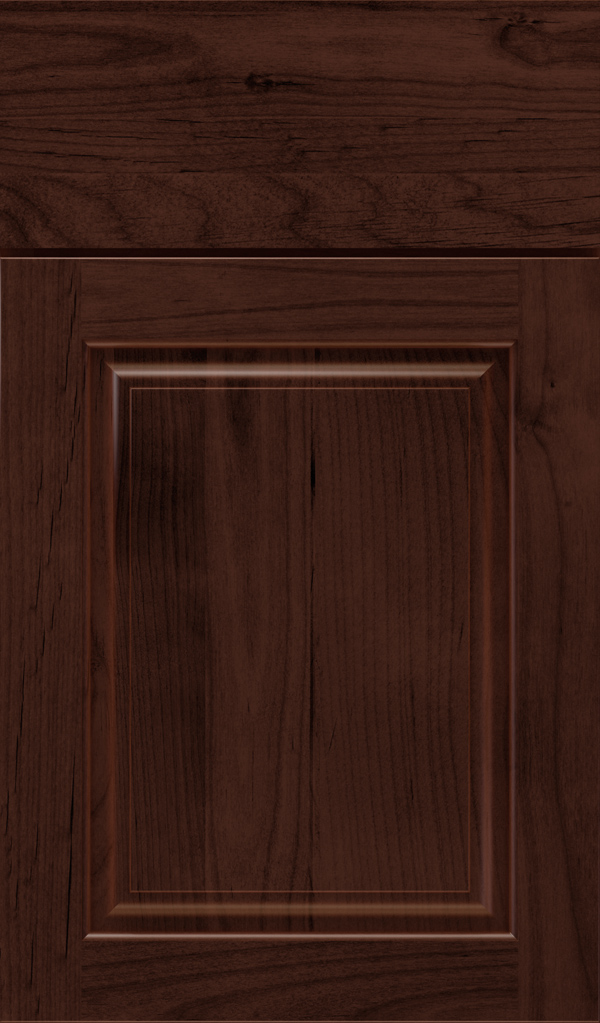 plaza_alder_raised_panel_cabinet_door_malbec