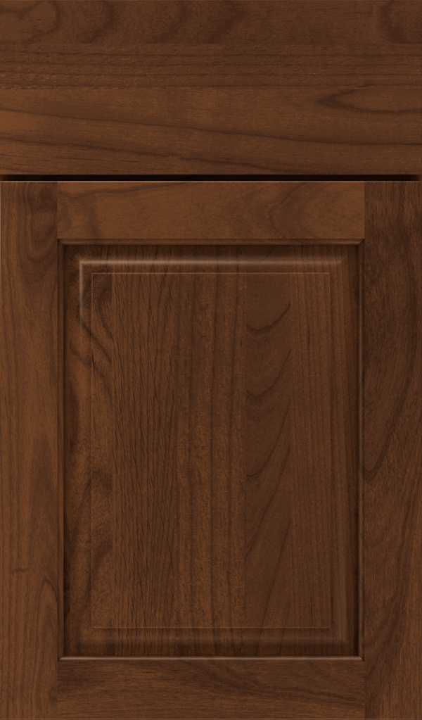 plaza_alder_raised_panel_cabinet_door_sepia