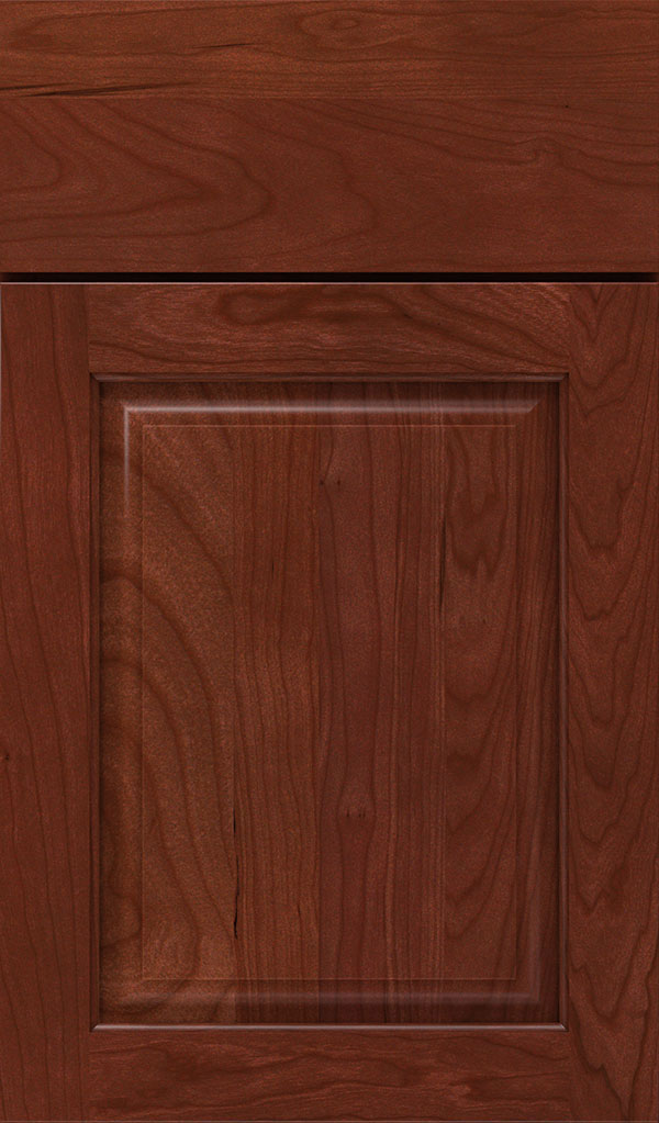 Plaza Cherry Raised Panel Cabinet Door in Arlington Espresso