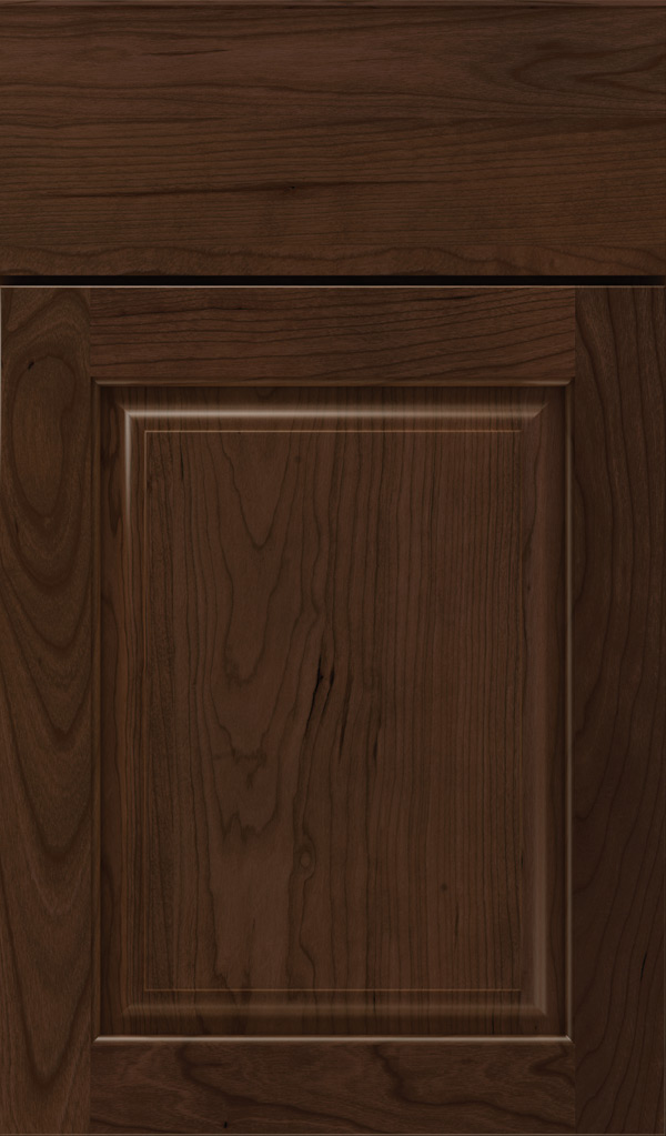 plaza_cherry_raised_panel_cabinet_door_bombay