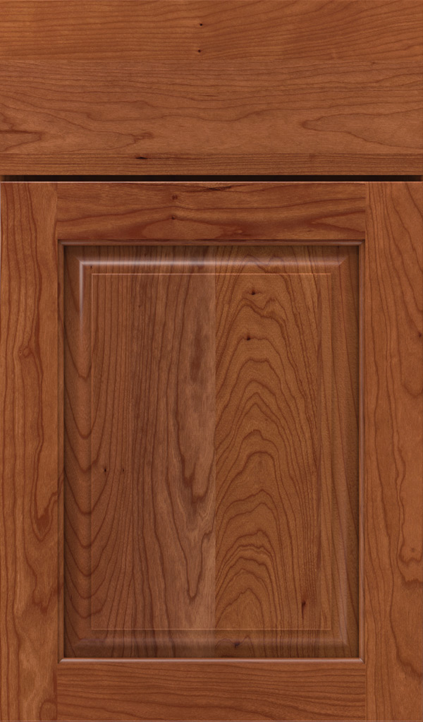 plaza_cherry_raised_panel_cabinet_door_brandywine
