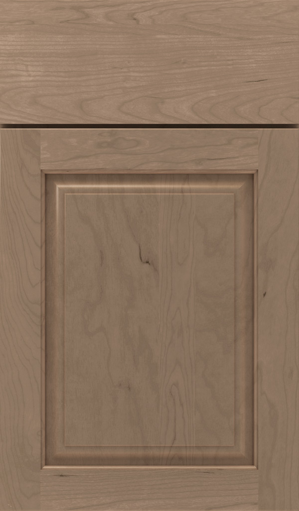 plaza_cherry_raised_panel_cabinet_door_fog