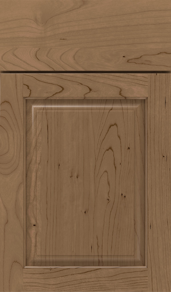 plaza_cherry_raised_panel_cabinet_door_gunny