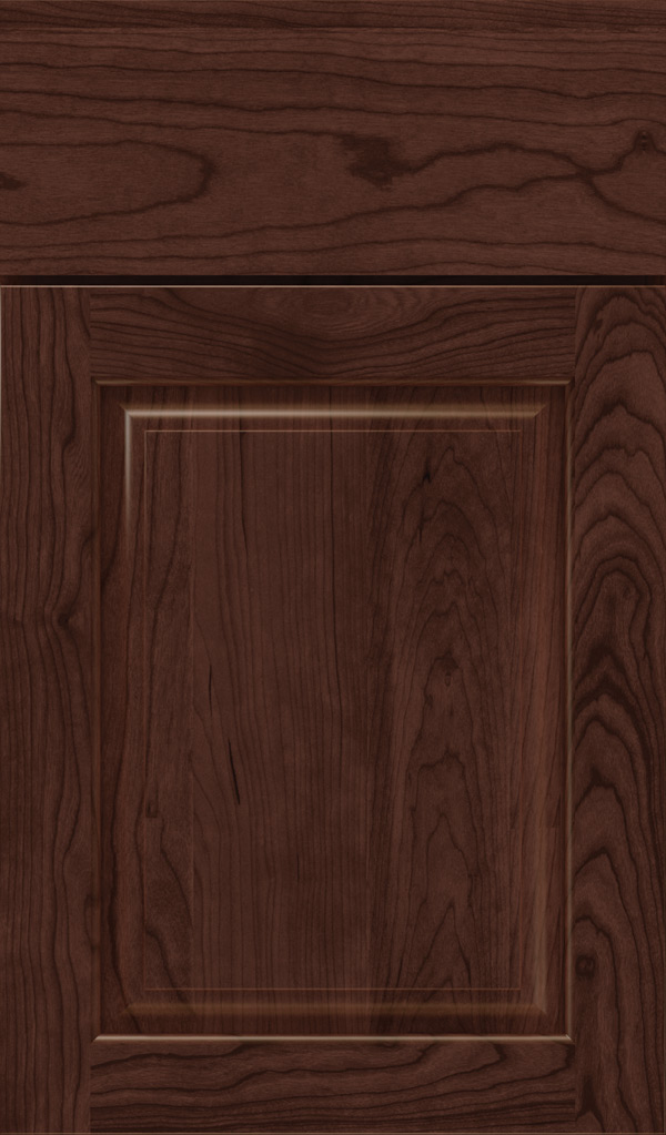 plaza_cherry_raised_panel_cabinet_door_malbec