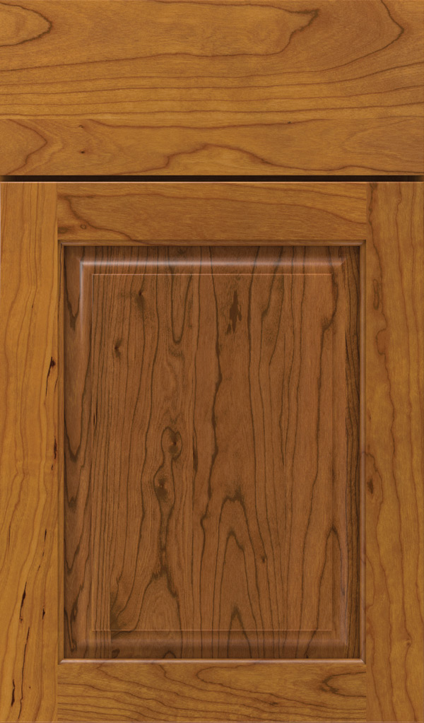 Plaza Cherry Raised Panel Cabinet Door in Pheasant