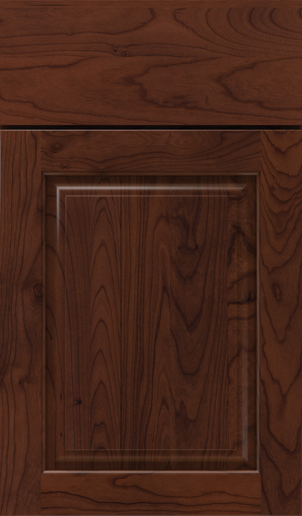 plaza_cherry_raised_panel_cabinet_door_sepia