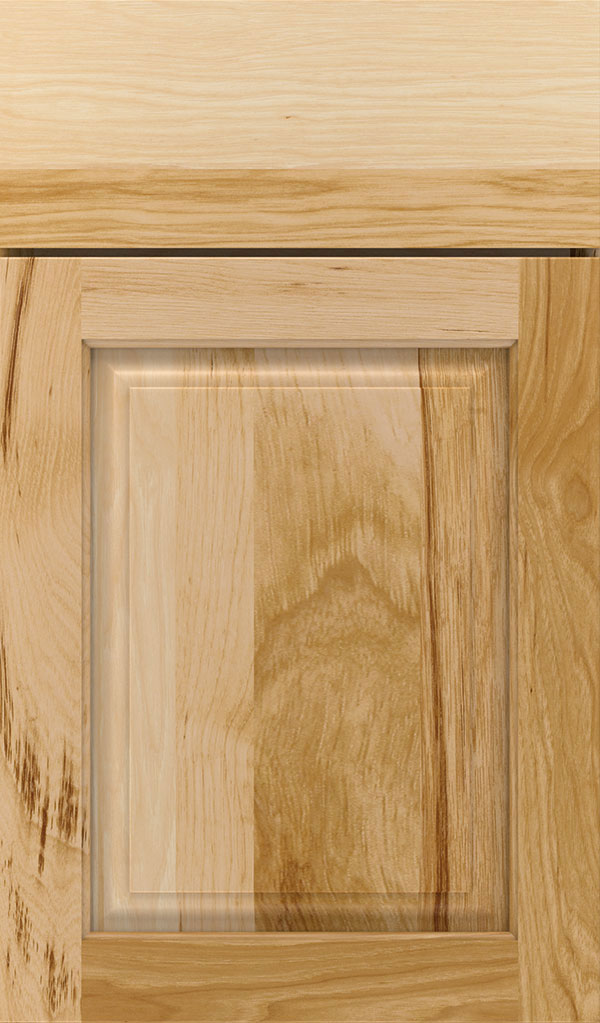 Plaza Hickory Raised Panel Cabinet Door in Natural