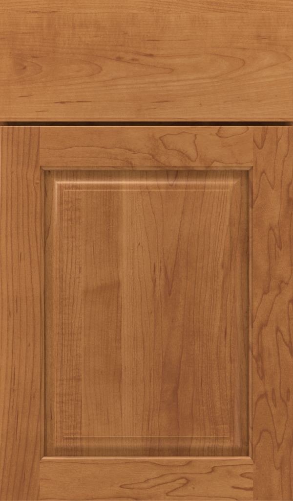plaza_maple_raised_panel_cabinet_door_suede