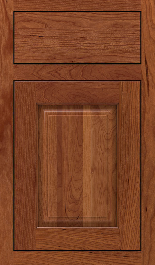 Plaza Cherry Inset Cabinet Door in Brandywine